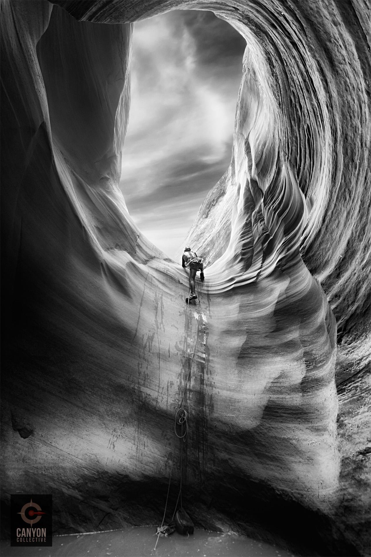 Poe | Canyon Collective